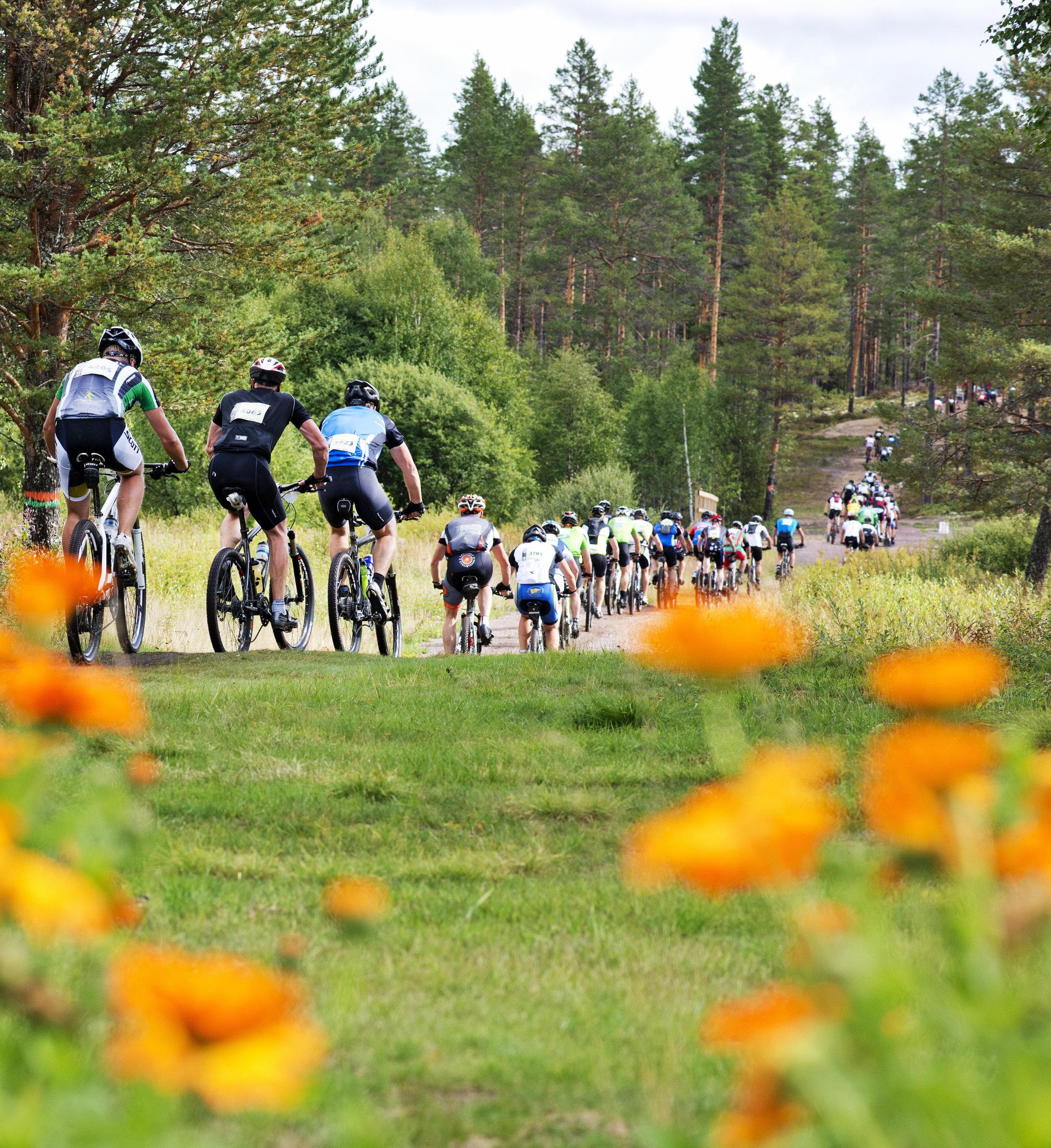 Cykla mountainbike i Sälen