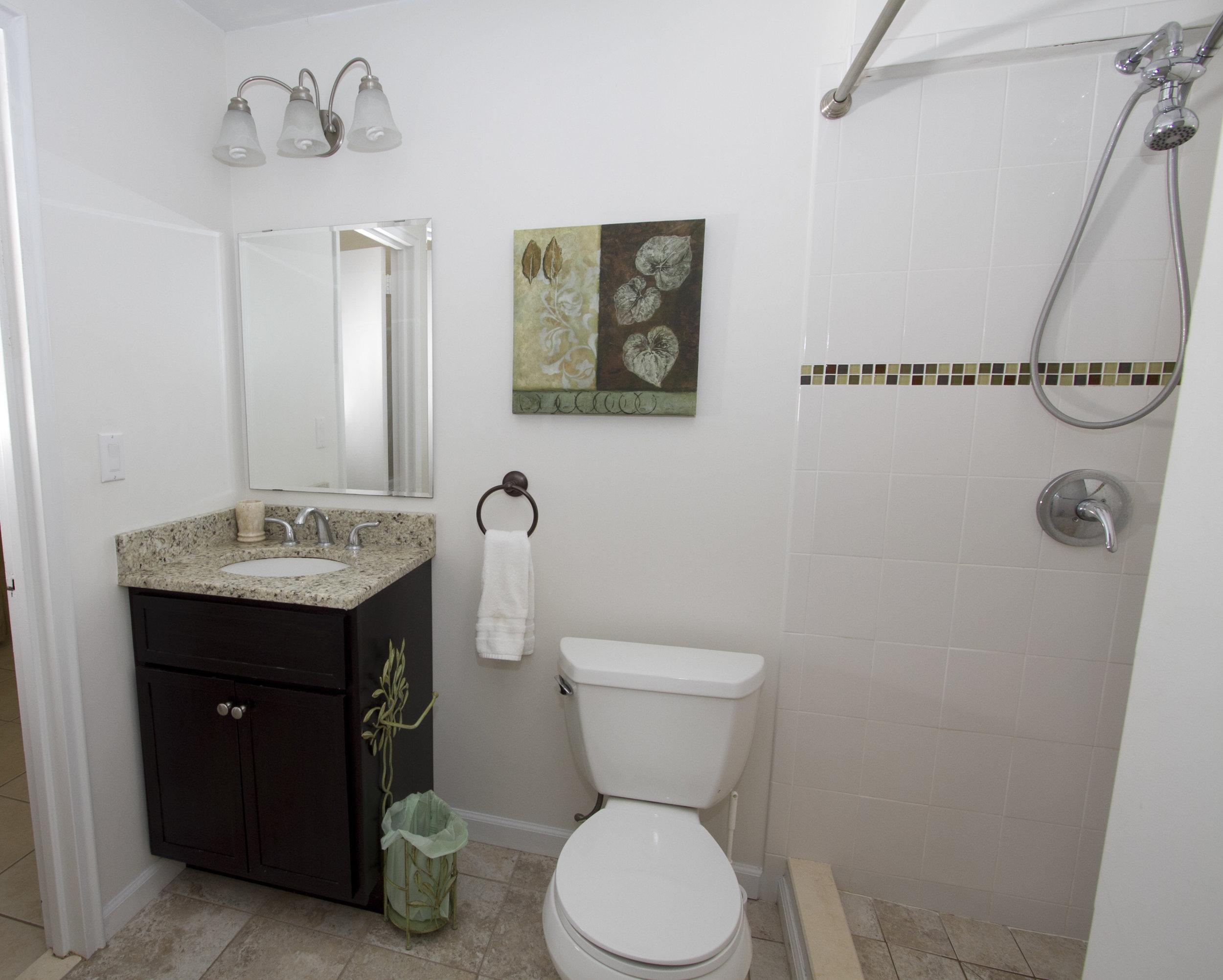 Lower_level_bathroom.jpg