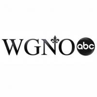 WGNO logo.png