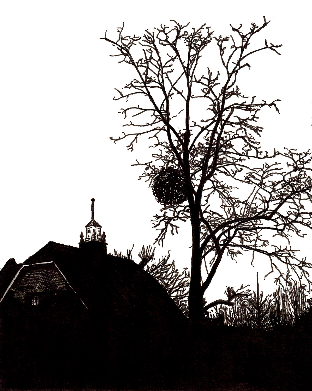 A Tree Last Winter
