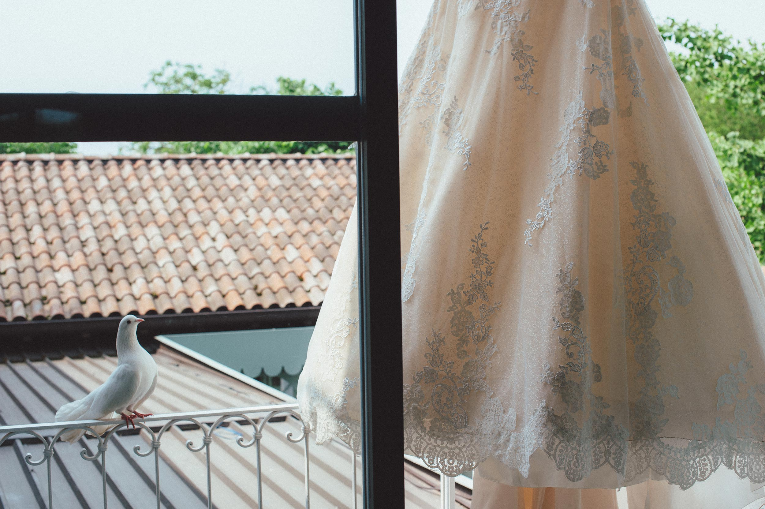 the-dove-and-the-wedding-dress-in-italy.jpg
