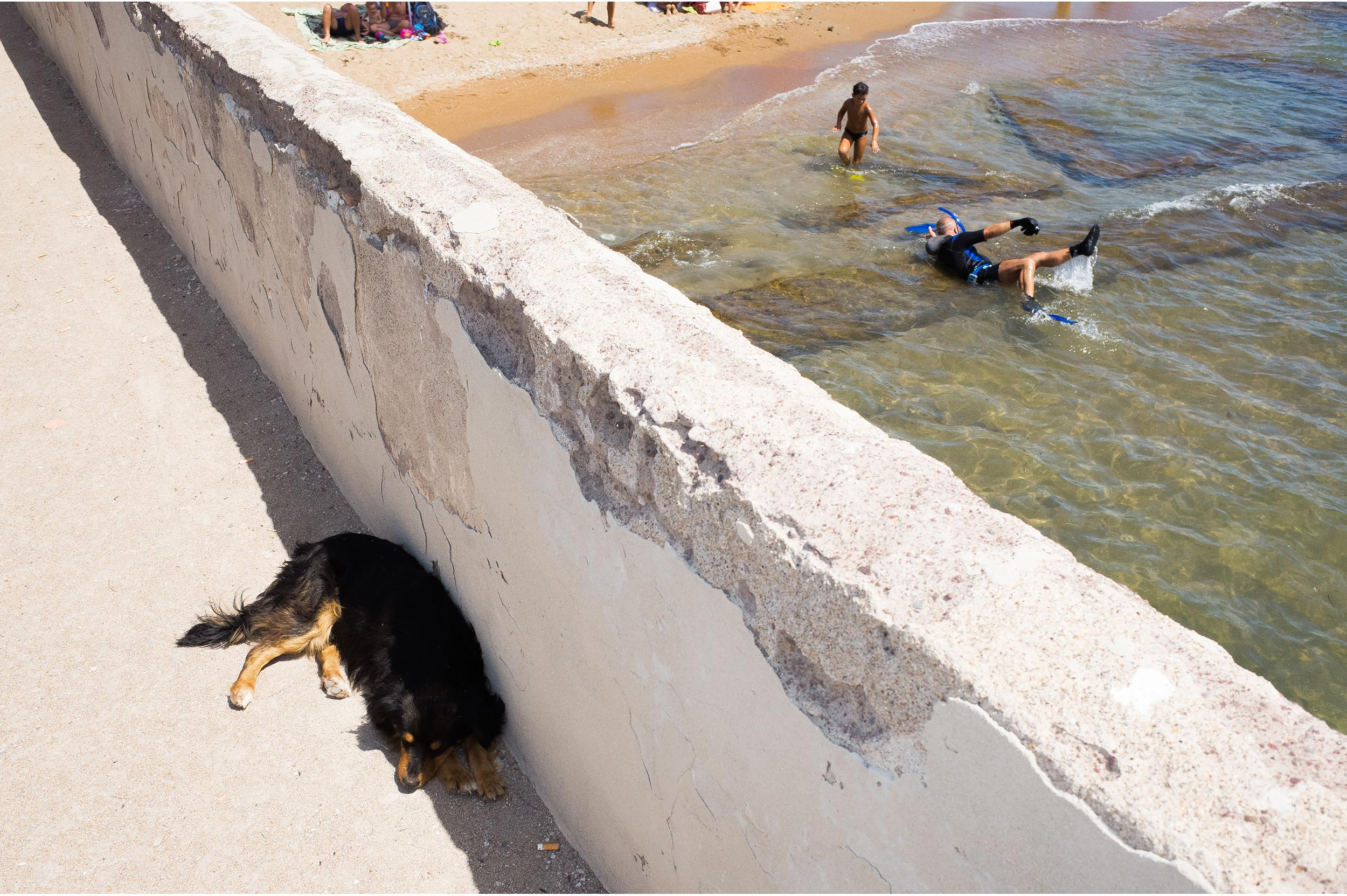 A dog sleeps seeking the shadow in Summer, while a man struggles trying to have fun in the water.