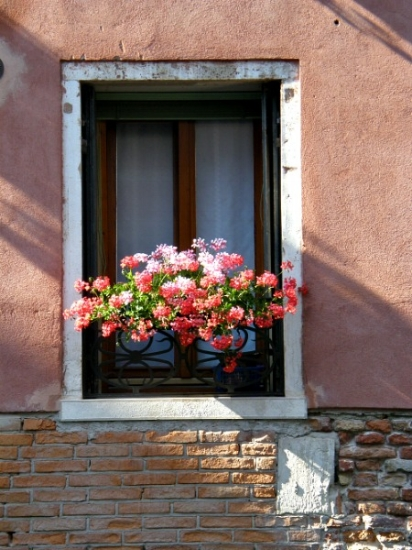Flower Box along the Canals of Venice. Picture by Bill Ross Photography
