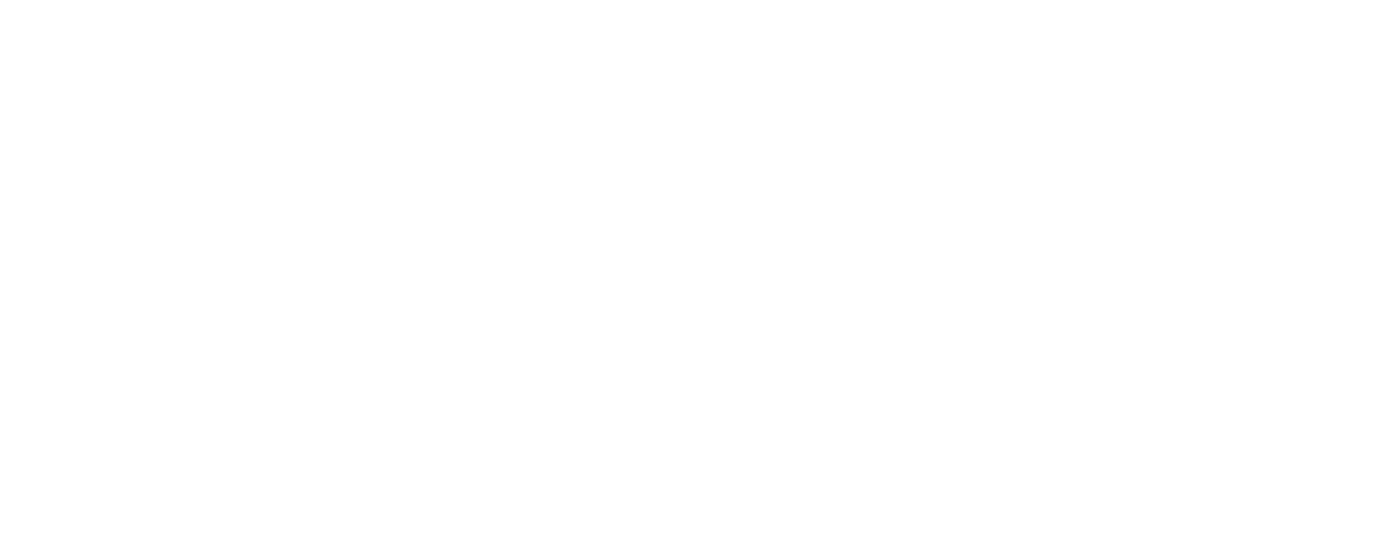 MENDES GROUP-logo-white.png