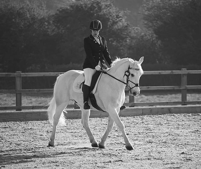 Lovely early morning light for @tallulah.m.dressage warm up today. Two great @british_dressage  scores and more progress with Binky. #dressagedaughter #equine #photography #horsesofinstagram #blackandwhitephotography