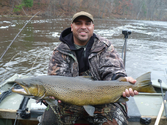 muskegon lake run brown trout.JPG