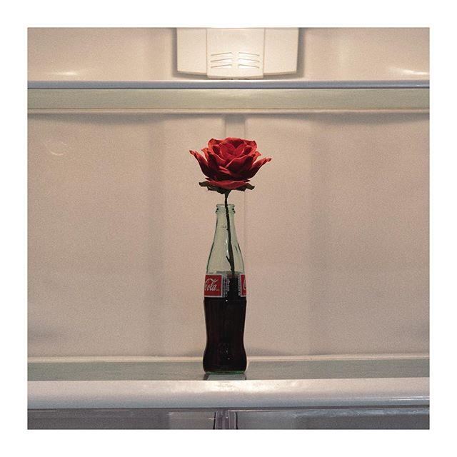 wanna be alone - May 17th