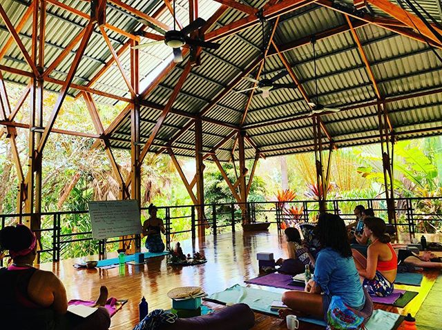 Our jungle classroom! This is where we spend most of our yoga teacher training days; moving, sitting, meditating, dancing, hugging, laughing, crying...always learning! #yogateachertraining #yoga #sacredspace #ritualspace #modernarchitecture #ecochic