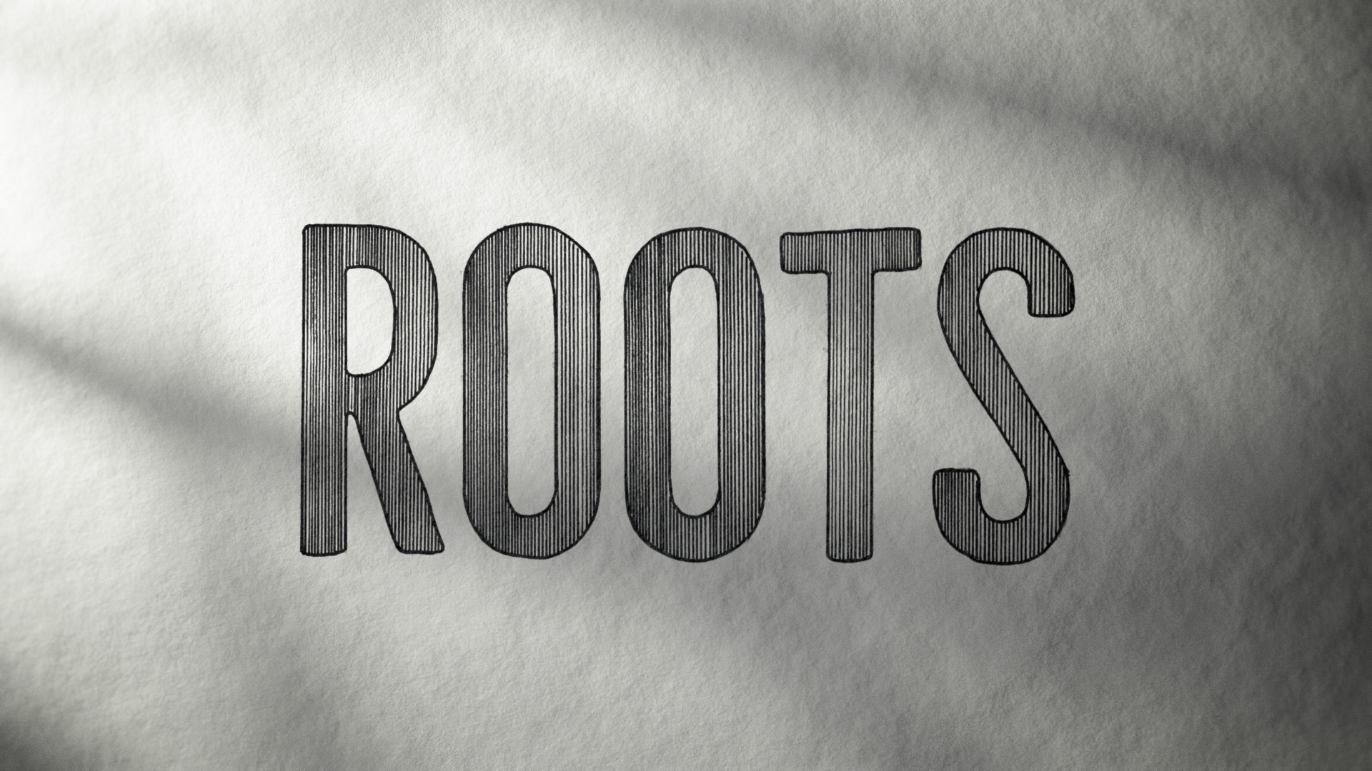 """Roots"" logo development – Line Illustration."