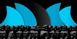 sharky and stephen logo.png