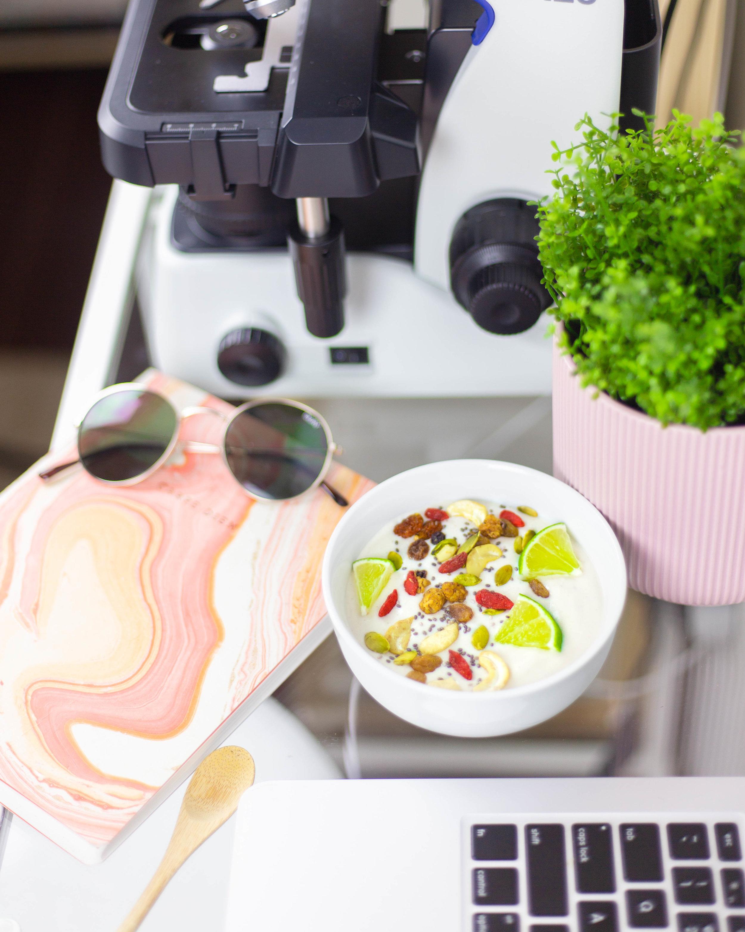 How to Make Creamy and Thick Vegan Yogurt Using Plant Based Milks   Plant Based Yogurt   Dairy Free and Probiotic Yogurt Recipe