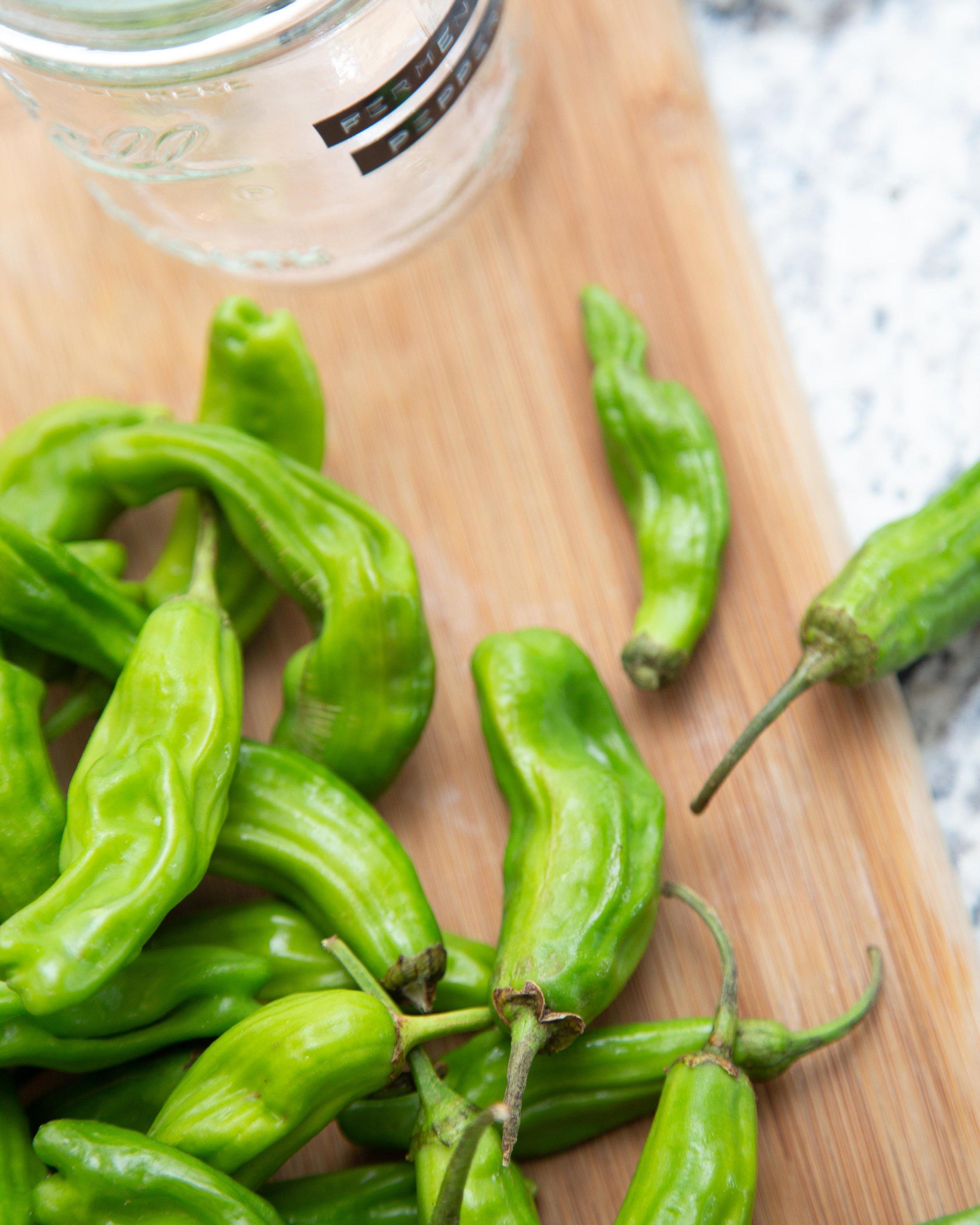 shishito_peppers-10.jpg