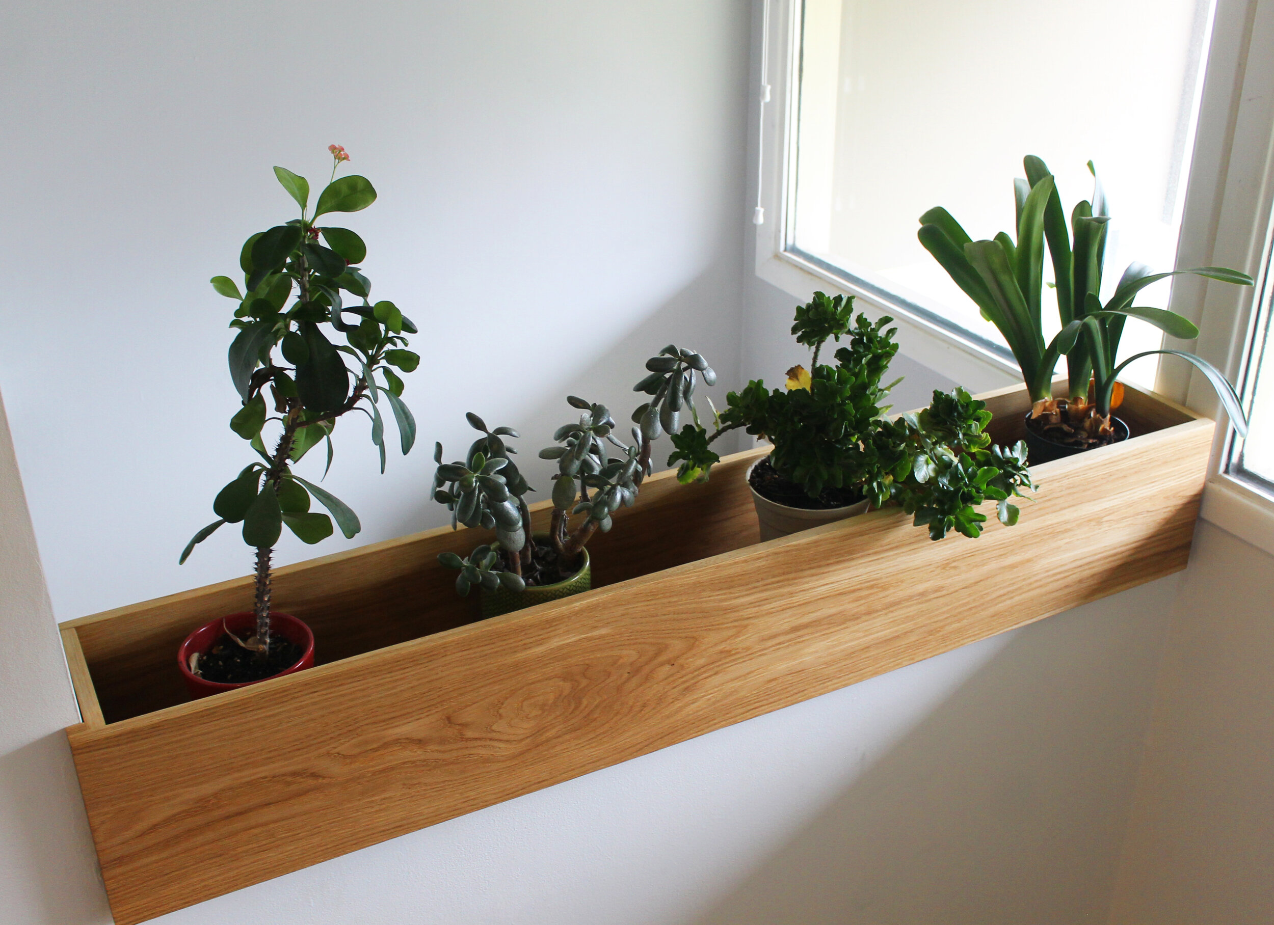 wallplanter1.jpg