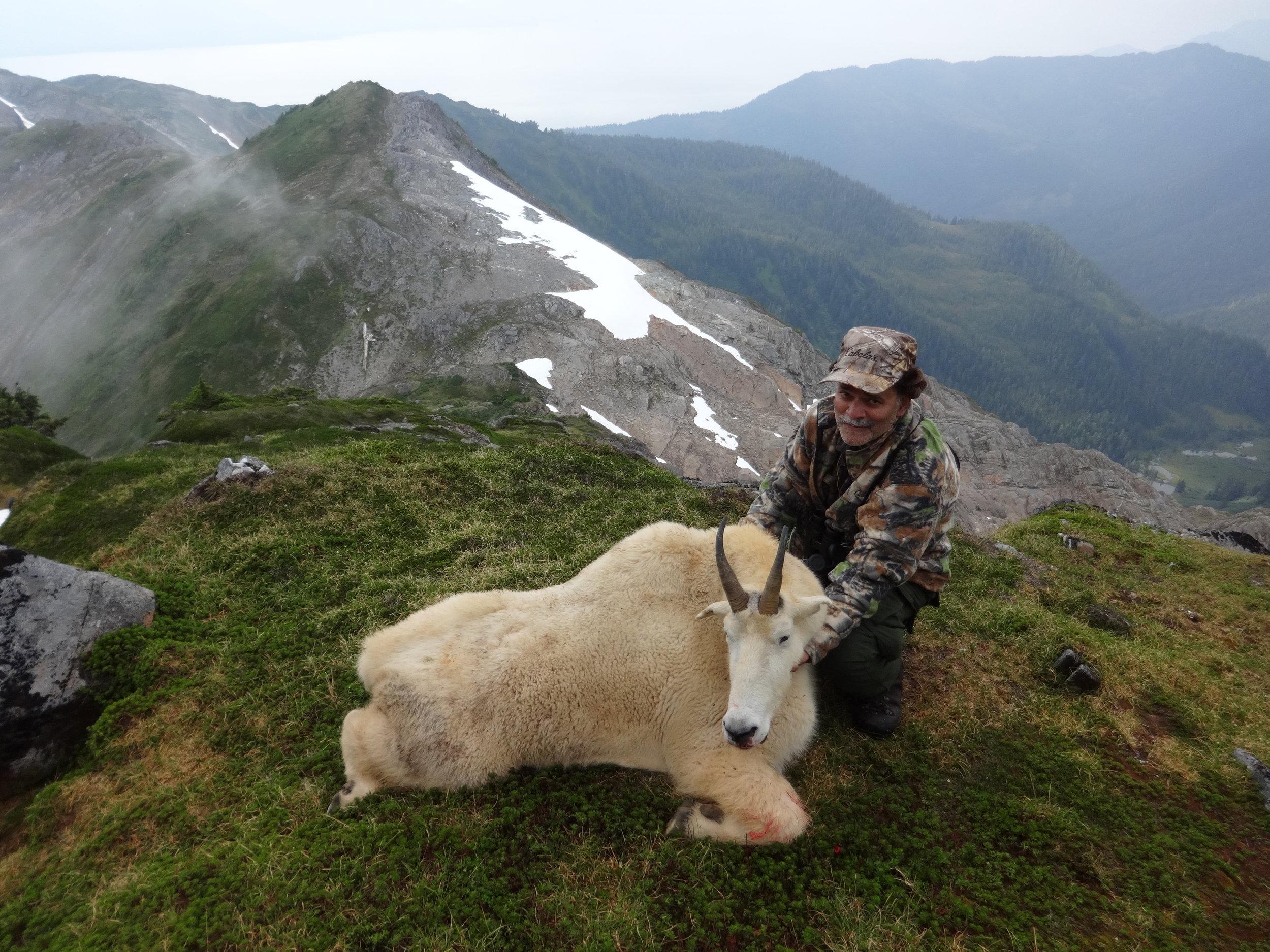 Aug. 2016 goat 016.jpg