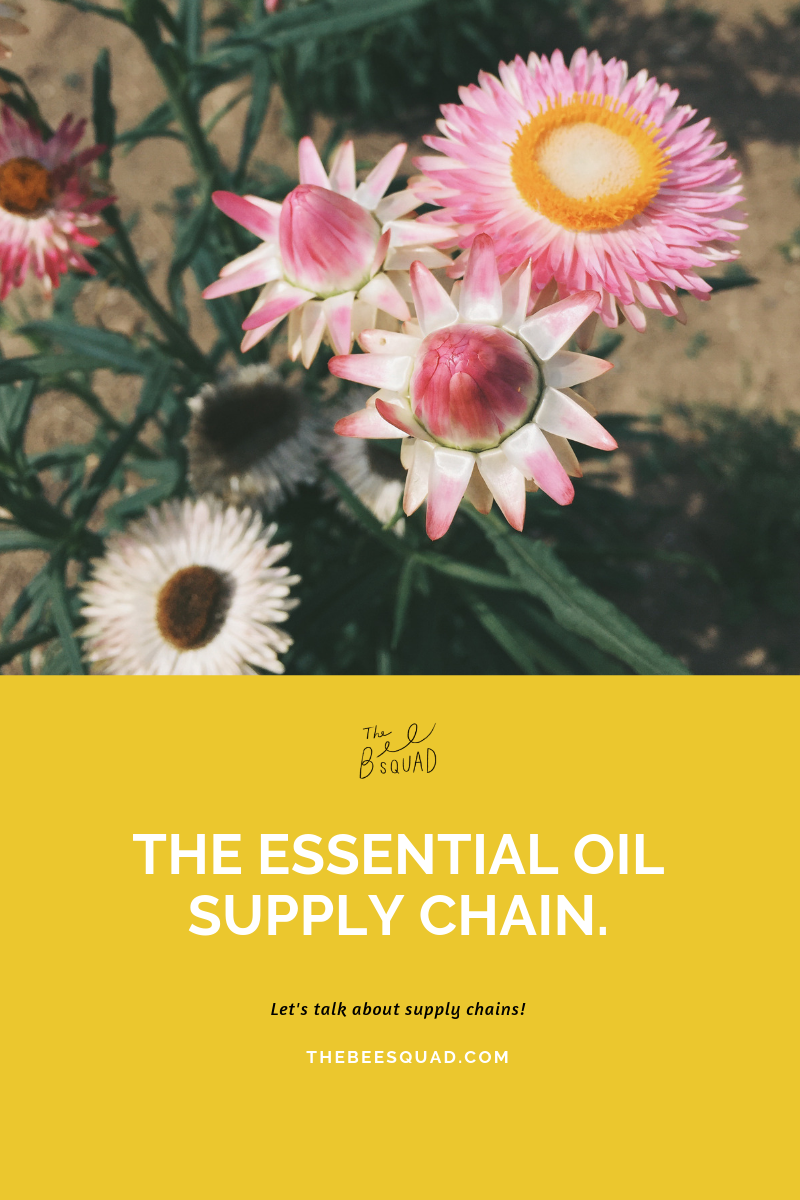 Essential Oil Supply chain Lizzy House.png