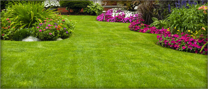 Property Maintenance: lawn mowing, weeding, clean up a so much more!