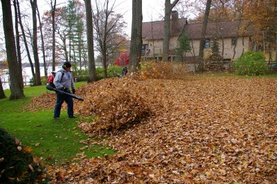 fall-Leaf-cleanup-bothell-clean-up-landscaping-clean-up-fall-landscaping-landscape-care-michigan.jpg
