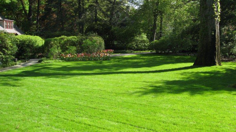 Edmonton's leader in Lawn Care and Landscaping services! -