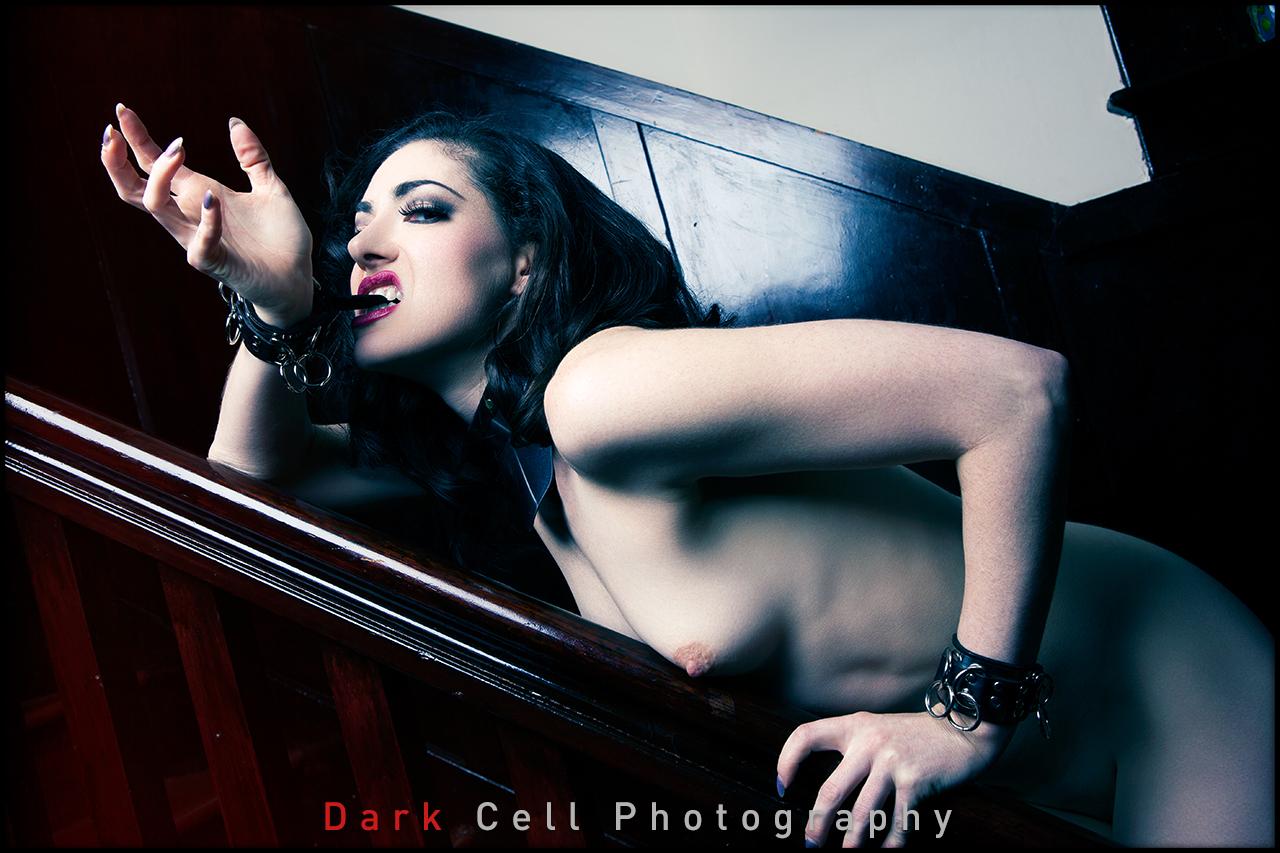 DarkCell_Horizontal_14.jpg