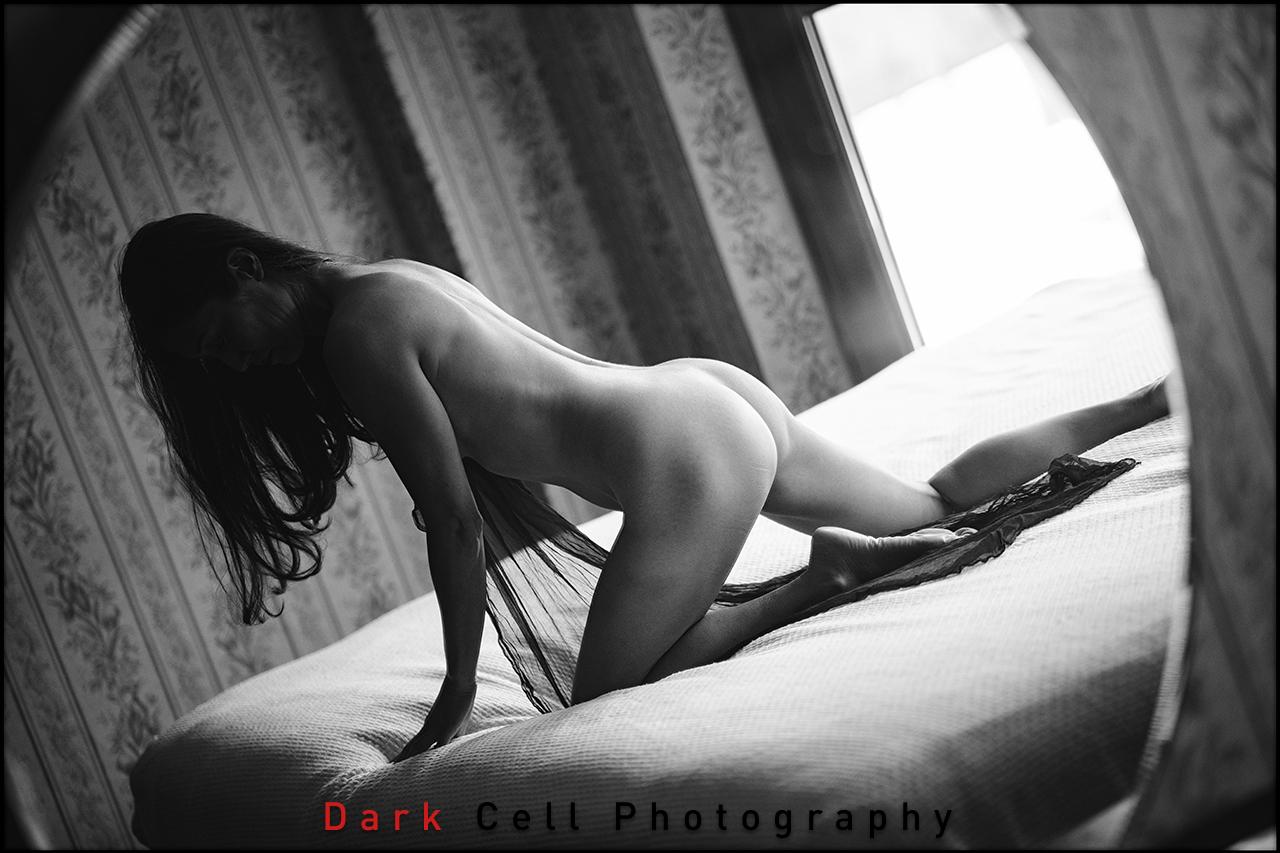 DarkCell_Horizontal_44_BW.jpg