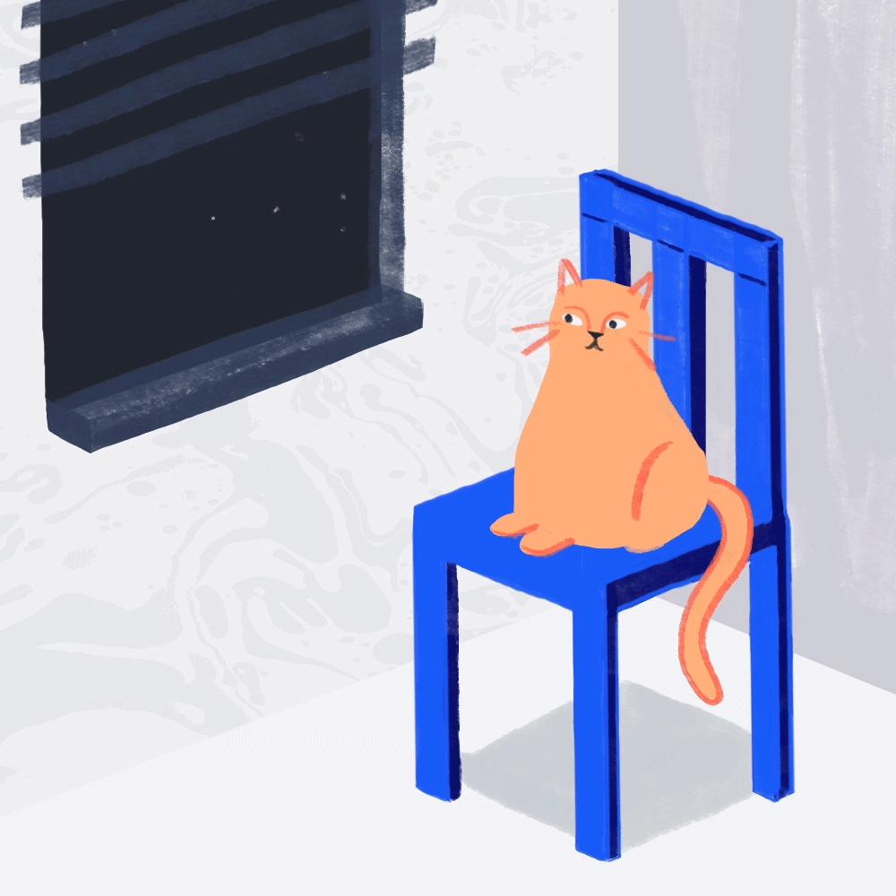 cat_1.png