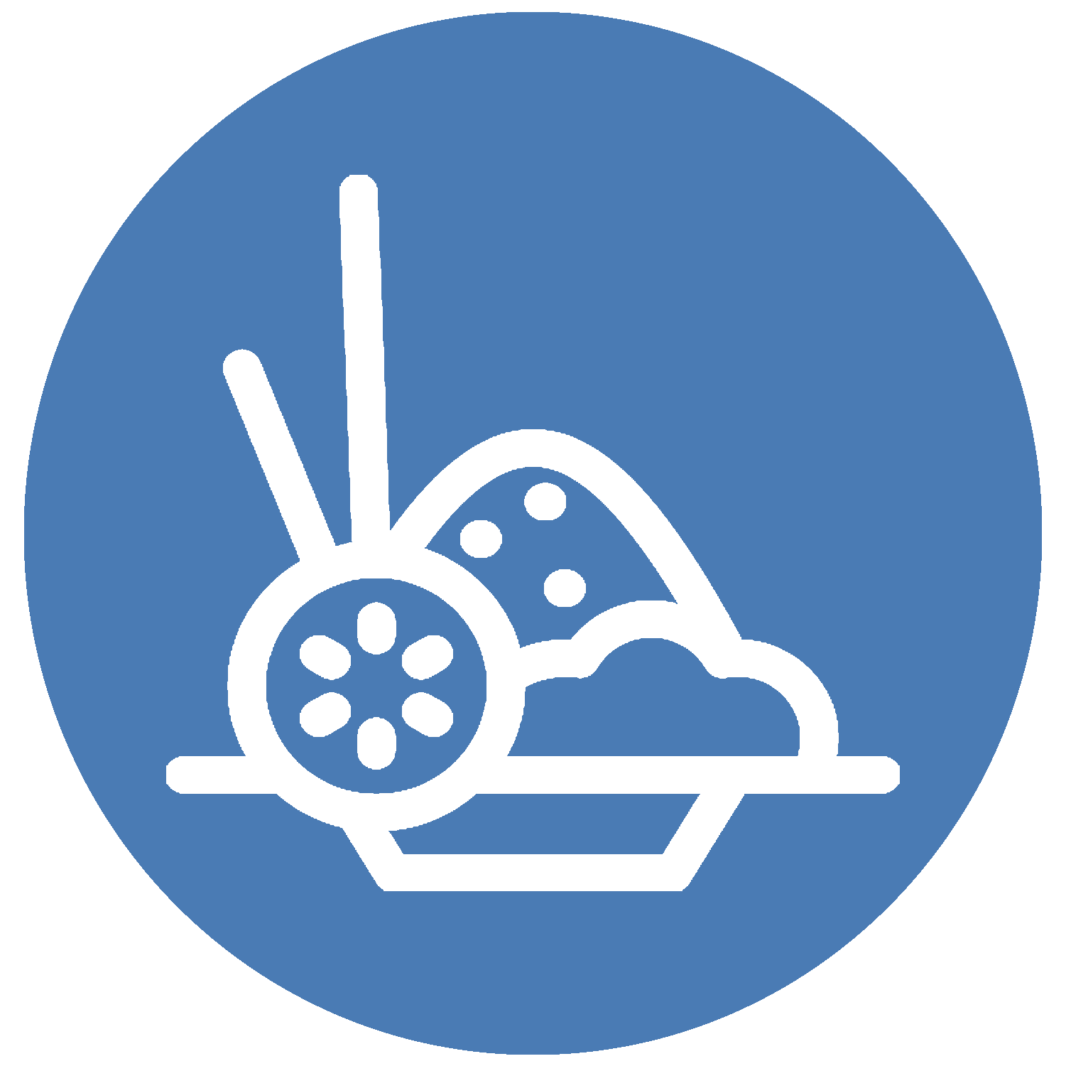 Plate Icon BB.png