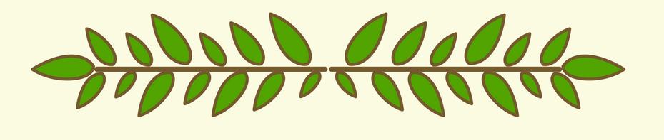 leaf line top.png