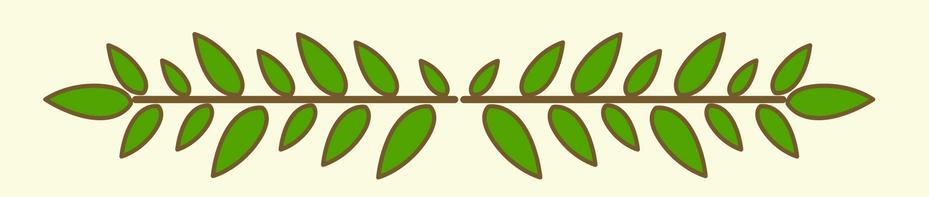 leaf line bottom.png