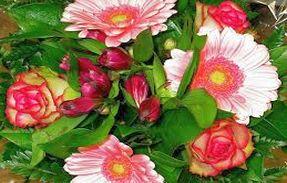 Florist - Vendors Apply Here
