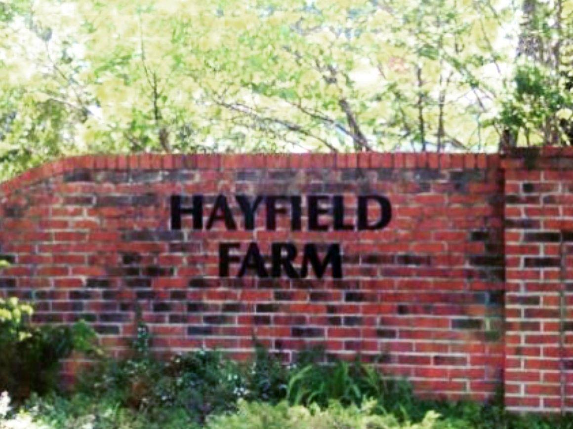 Hayfield, Alexandria -