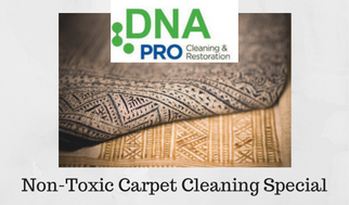 Non-Toxic Carpet Cleaning Special.jpg