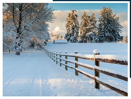 Wintery Scene in the Pacific Northwest   Places to stay on Lummi Island