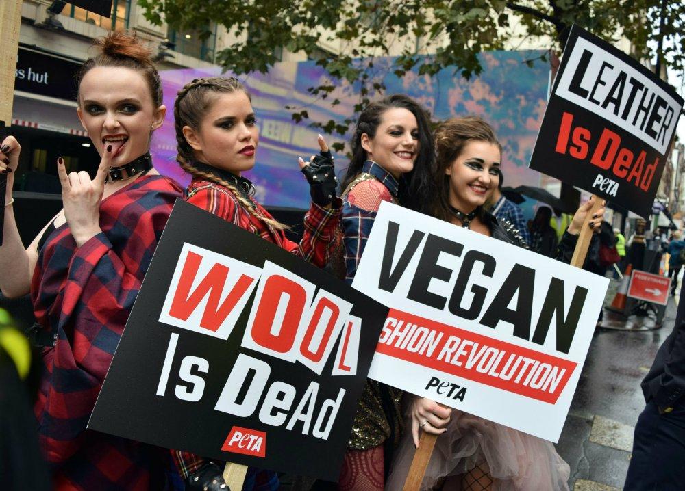 Vegan-Fashion.jpg