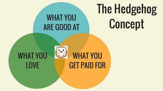 HedgeHog_Concept.png