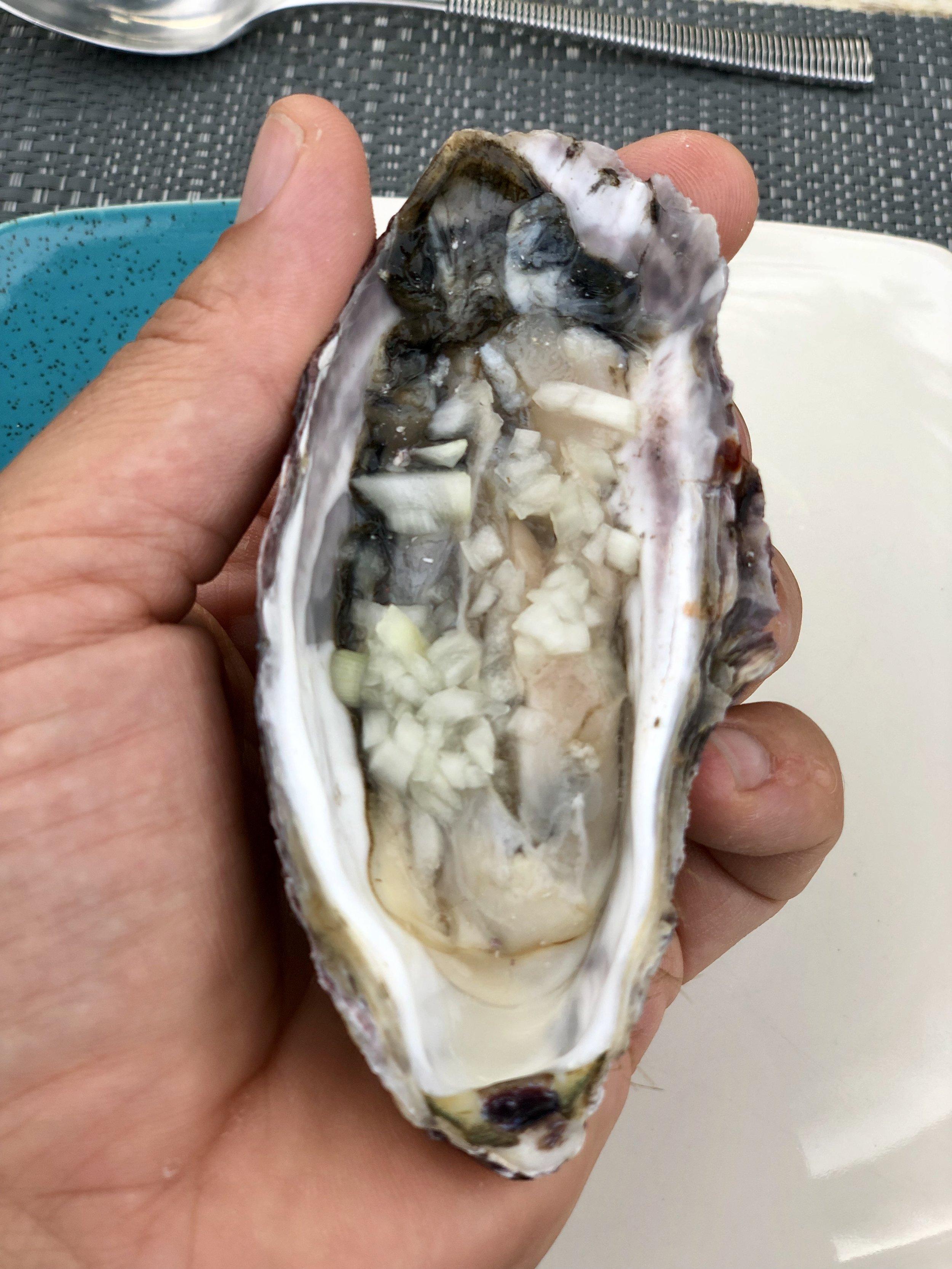 oyster.jpg