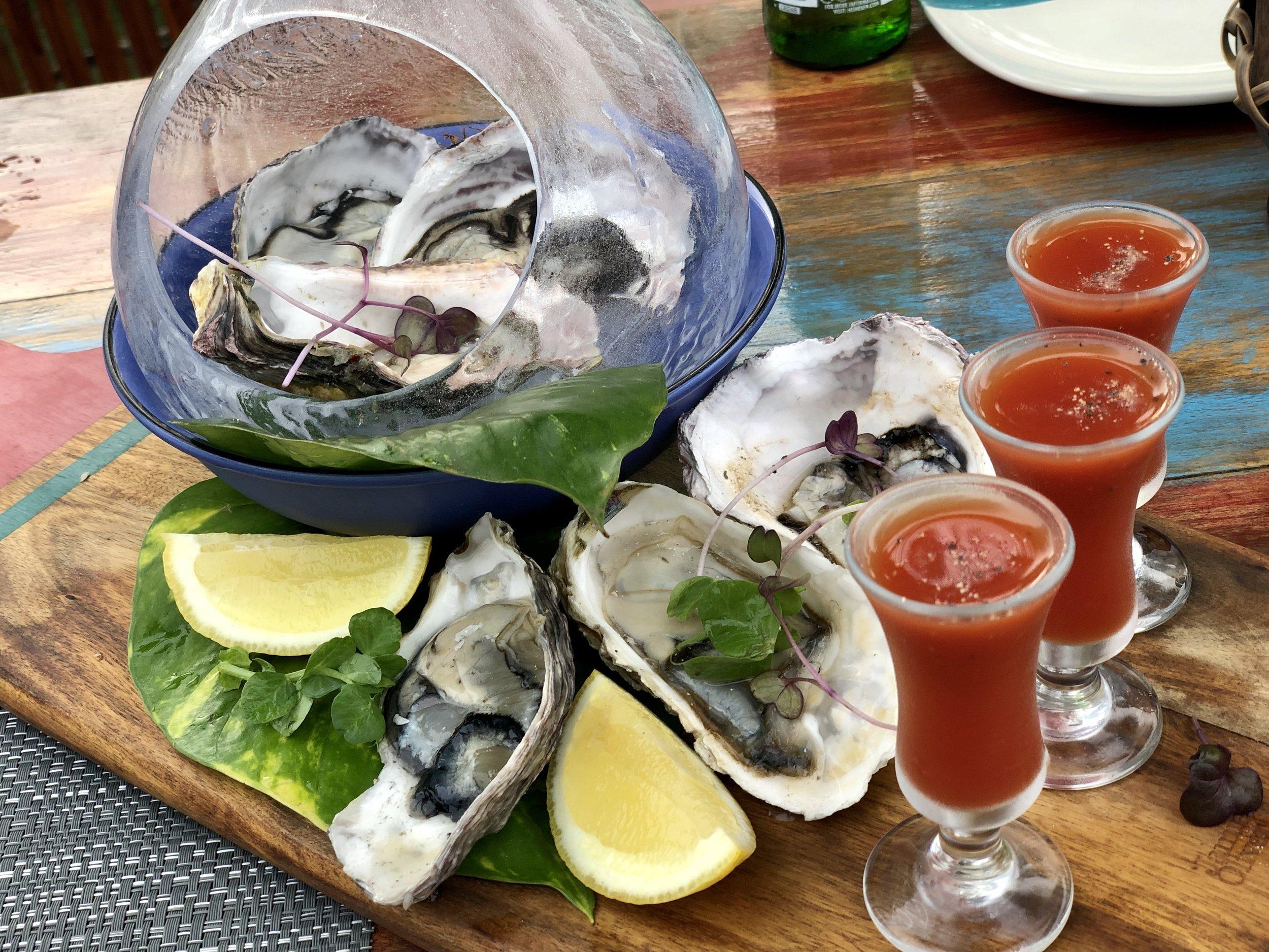 oysters n bloody marys.jpg