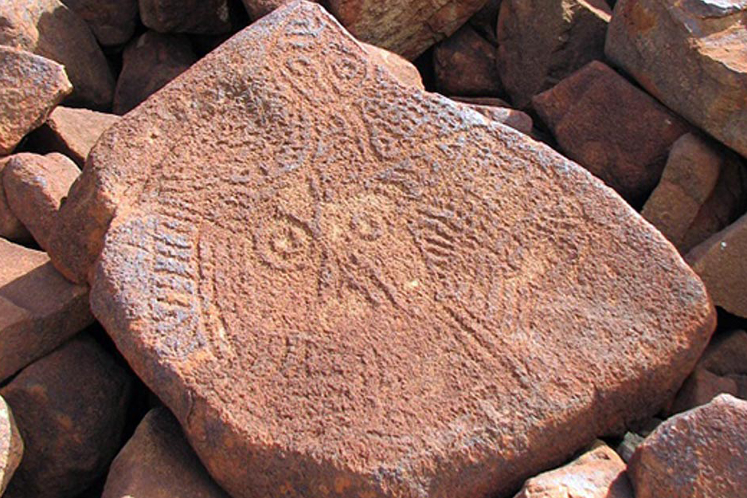 This Burrup petroglyph may be one of the oldest carved faces in the world / Photograph by Ken Mulvaney