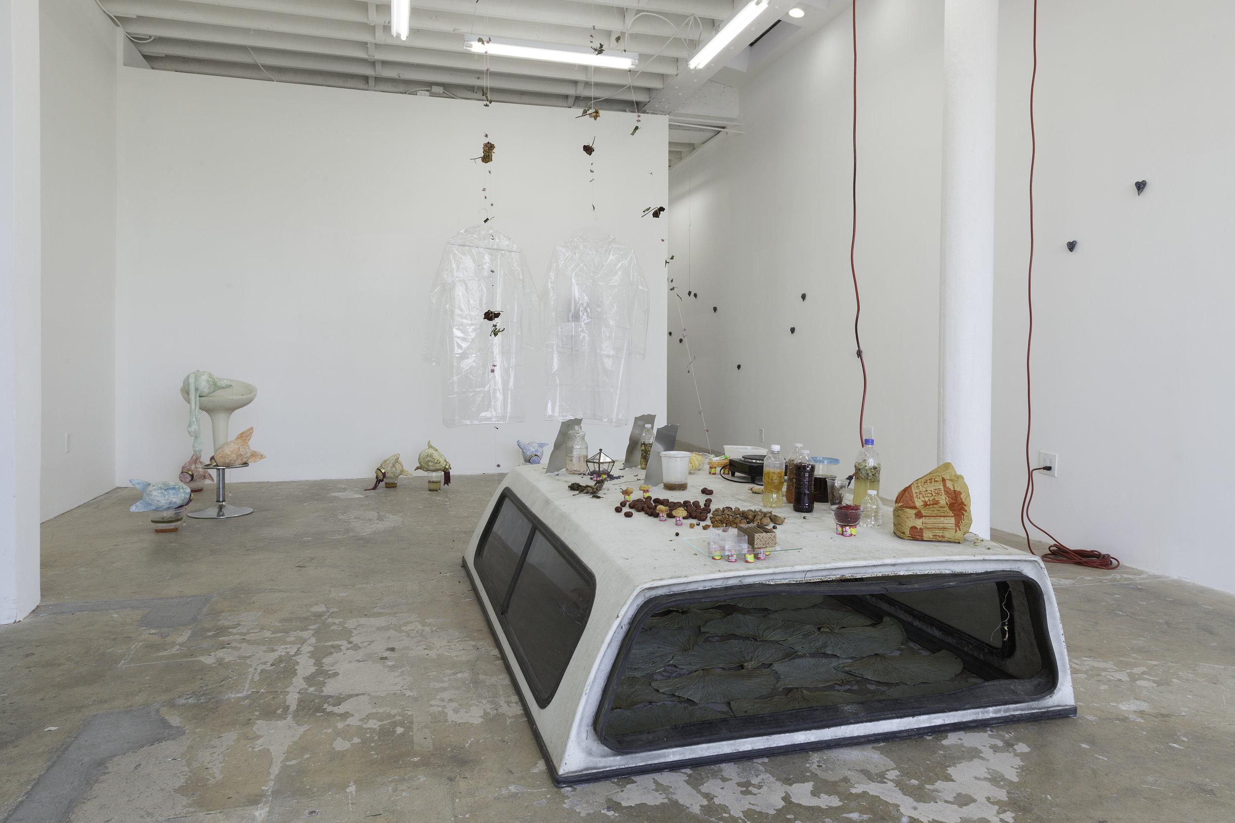 "Installation view, Catalina Ouyang, ""DEATH DRIVE JOY RIDE"" 2018. Make Room, Los Angeles"
