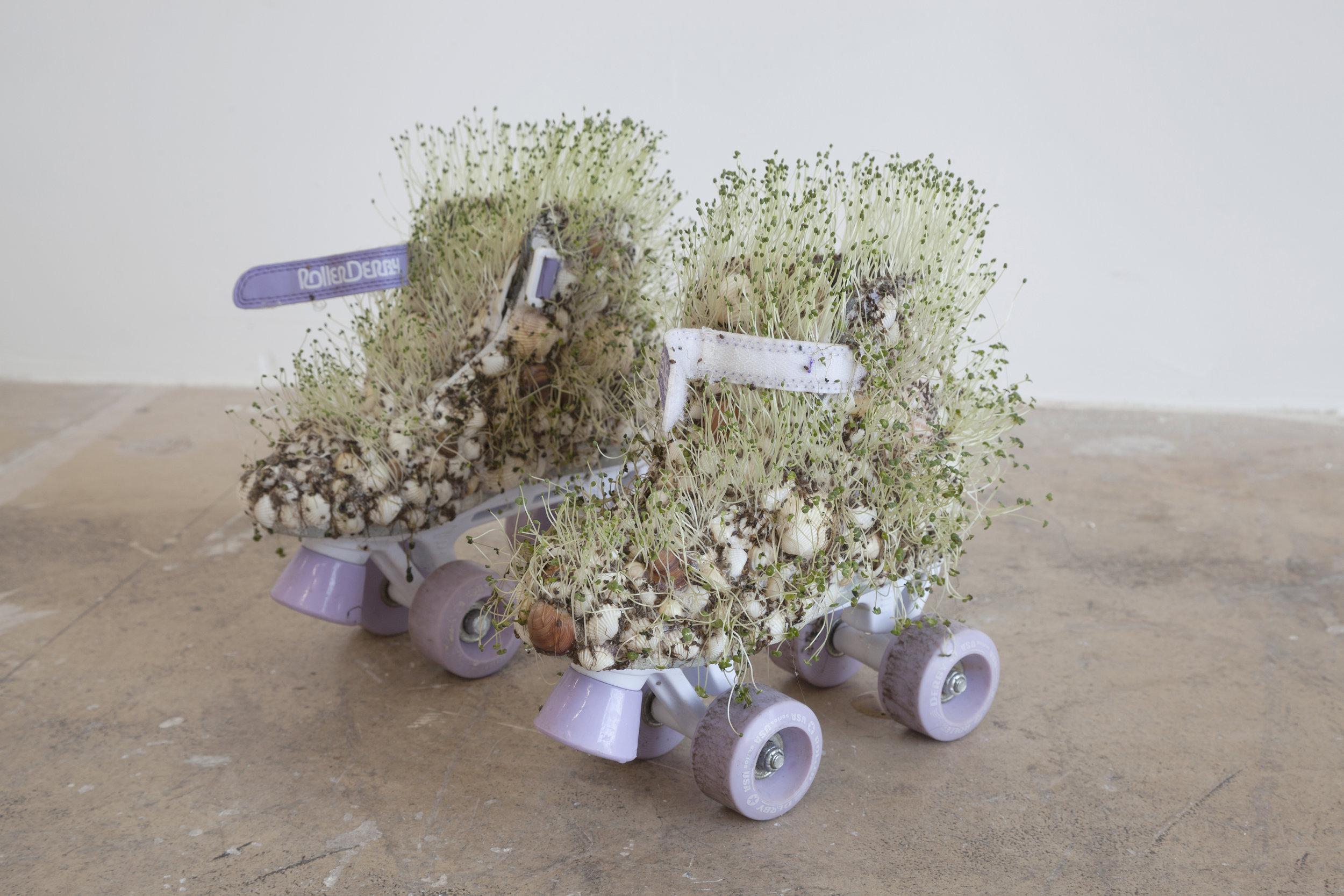 "Catalina Ouyang, ""untitled,"" 2018 seashells, rollerskates, chia seeds"
