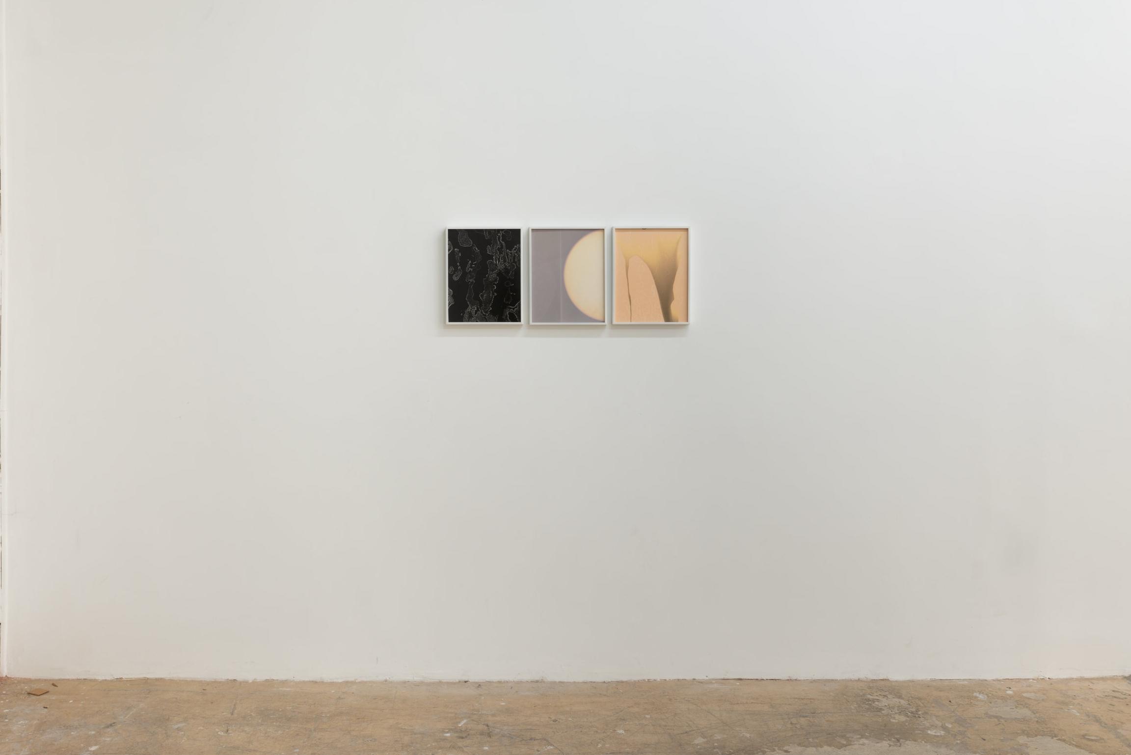 Left to Right:  Flow Genesis 11, Flow Genesis 12, and Flow Genesis 10, 2018.  Unique Silver Gelatin Photogram.