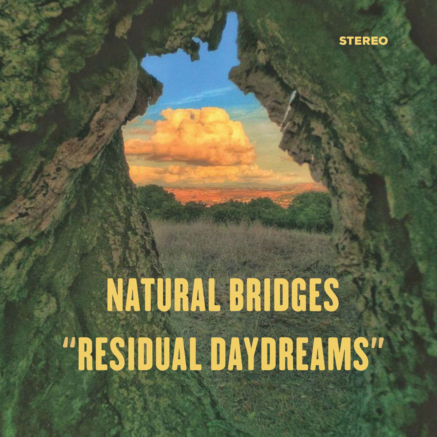 RESIDUAL DAYDREAMS