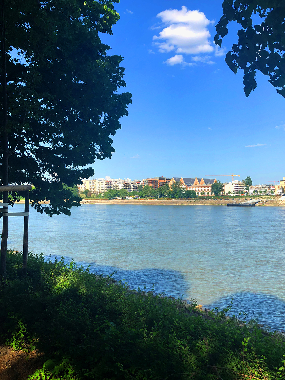 Run Budapest Margaret Island 5K Running Track 02