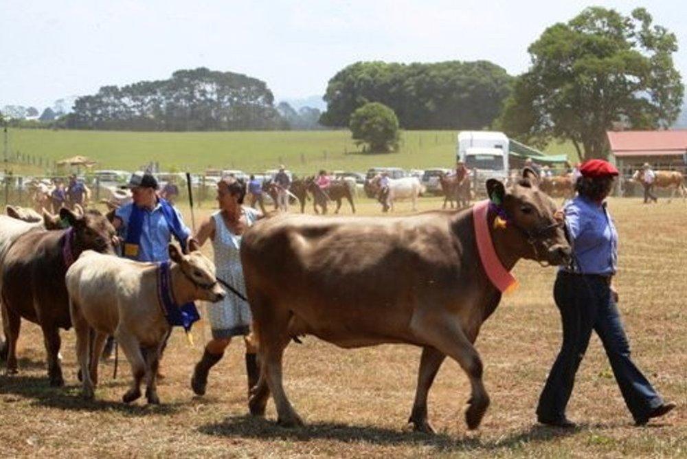 Beef+Parade+1.jpg