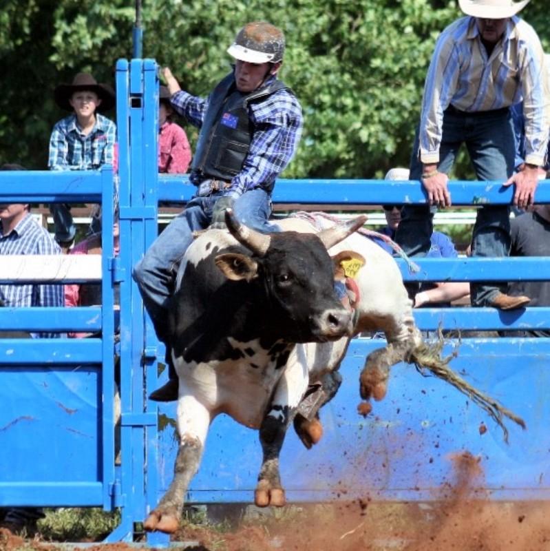 rodeo0.jpg