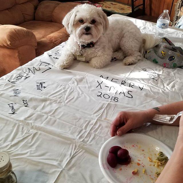 He does what he wants... #pupperman #gentleman #doggo #pupper #likeaboss #dog #dogsofinstagram #merrychristmas