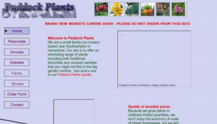 PP_Website_Dreamweaver.JPG