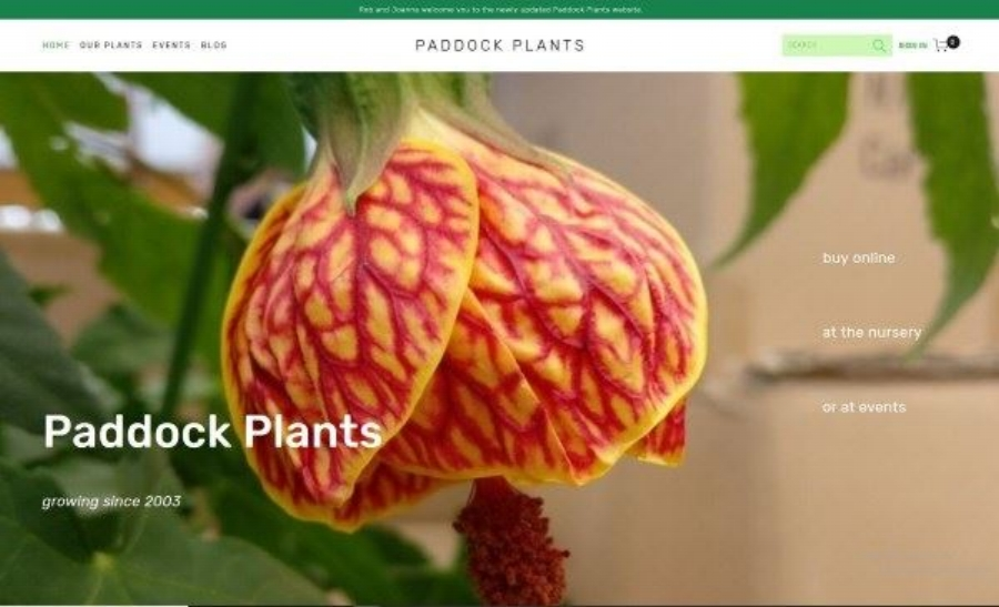 PP_Website_Squarespace.jpg