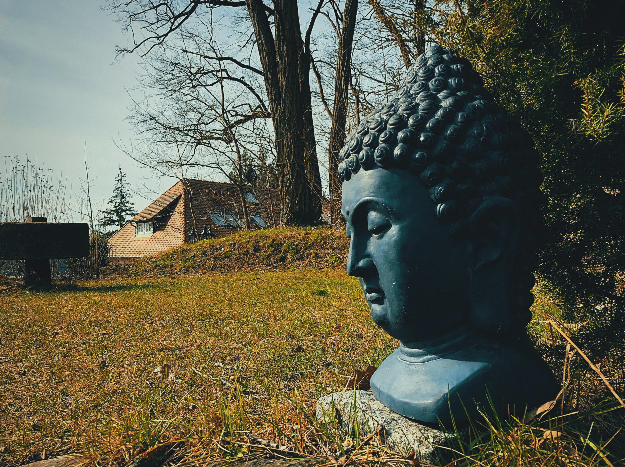 Buddha_FJ.jpg