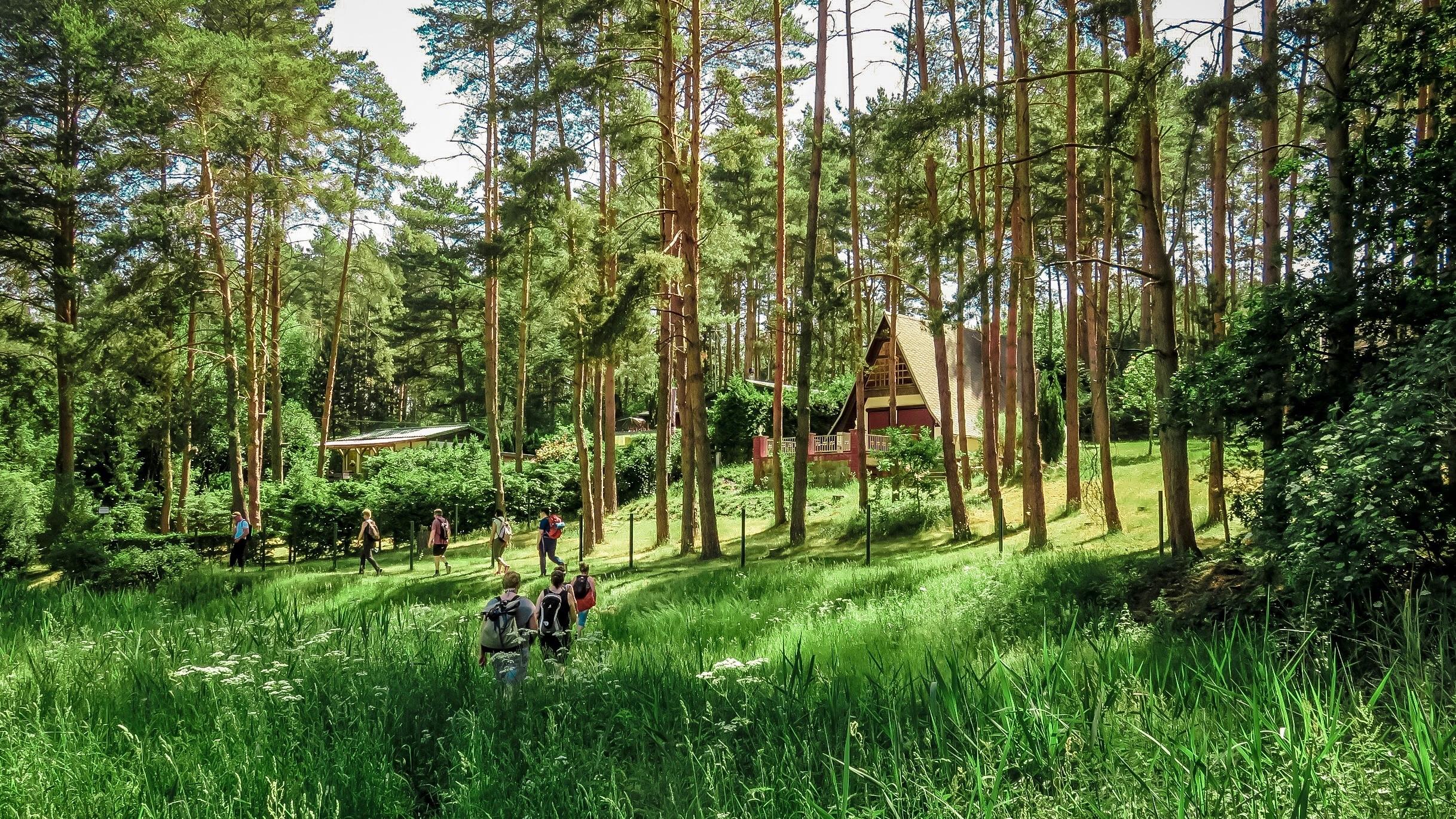 Fastenwandern im Wald mit Fastenjens
