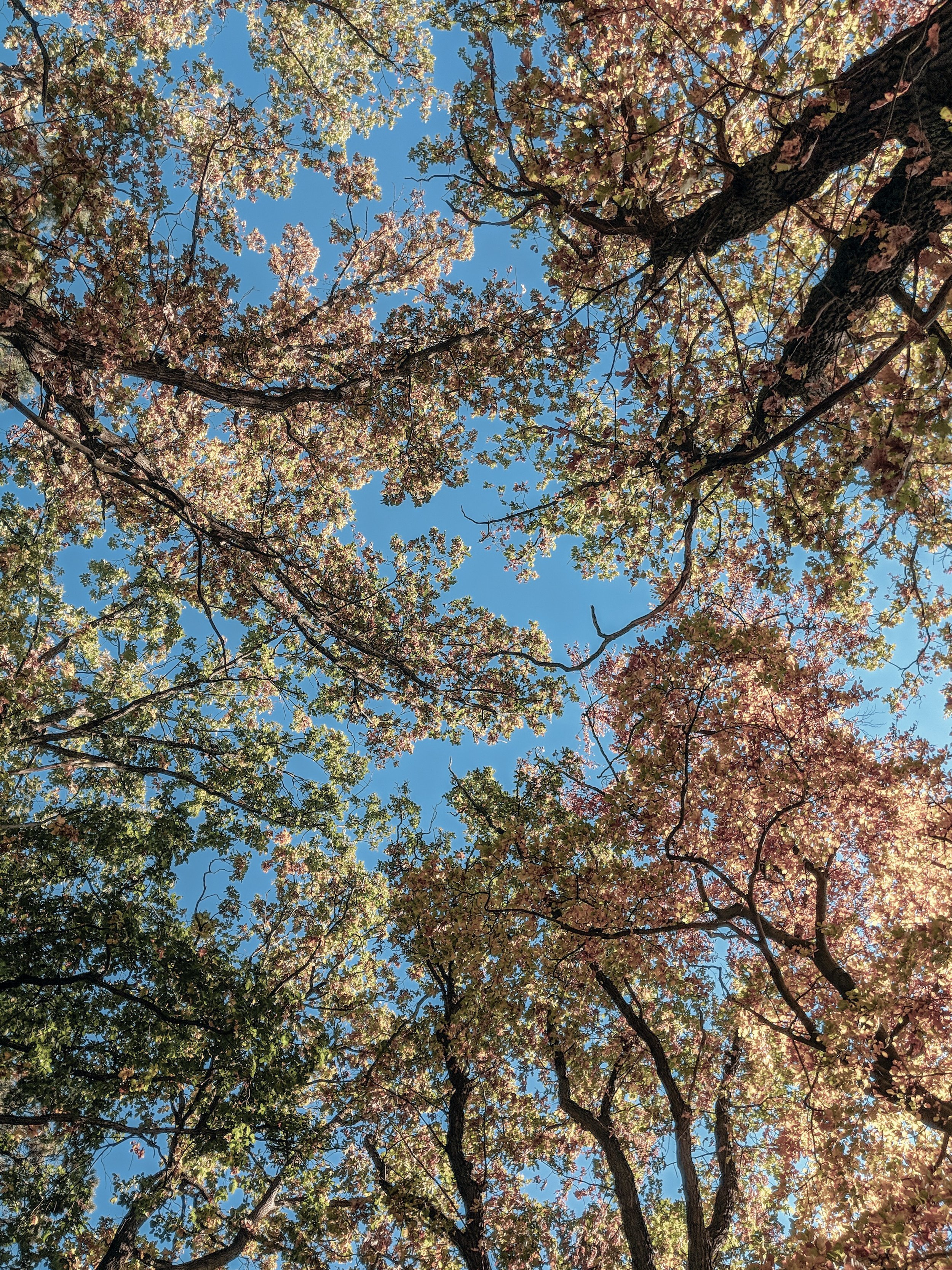Herbstzeit in Brandenburg